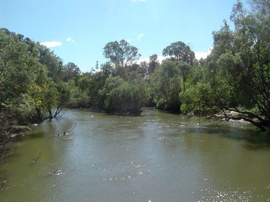 'Muddy' Logan River