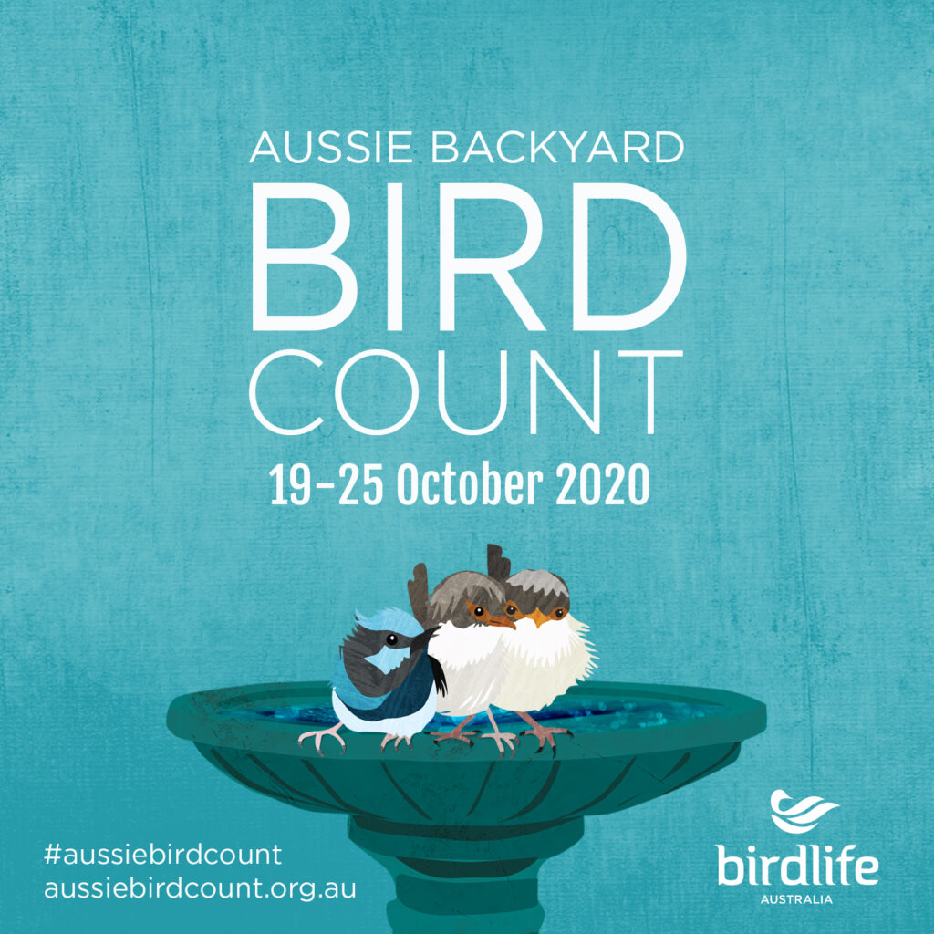 2020 Aussie Backyard Bird Count