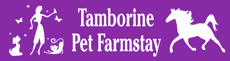 Tamborine Pet FarmStay
